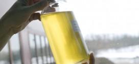 Oilseed-300