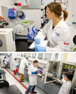 Students at work at the Canadian Food and Wine Institute (CFWI)