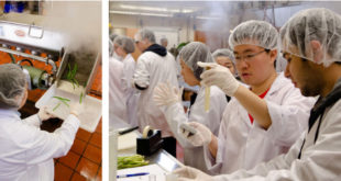 Andrew Chen and Ariela Badenas took first place at Pulse Canada's 2015 Student Food Product Development Competition for their soy tempeh product (right)