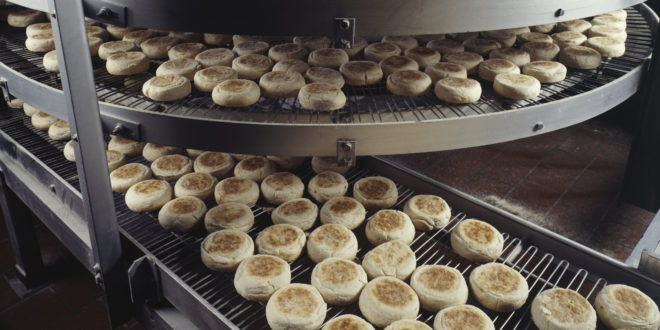 Bakery producing English muffins, elevated view